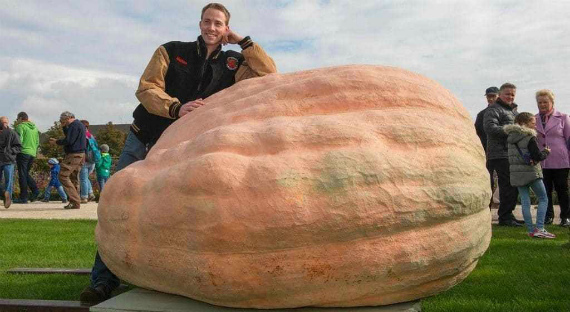 Самая большая тыква