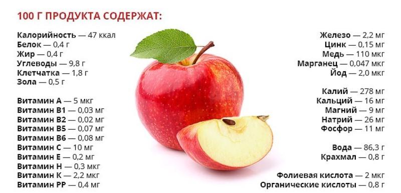 Химический состав и калорийность яблок