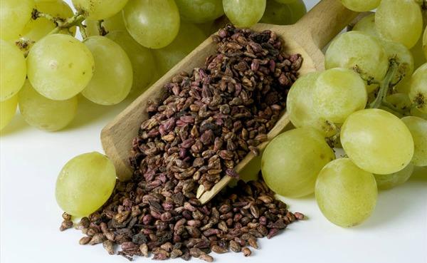 Виноградные косточки: польза и вред
