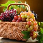 Виноград — польза и вред для здоровья