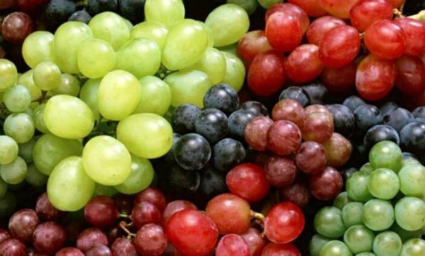 Какой виноград полезнее - черный или зеленый