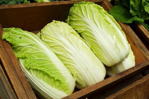 Как правильно выбрать и хранить капусту