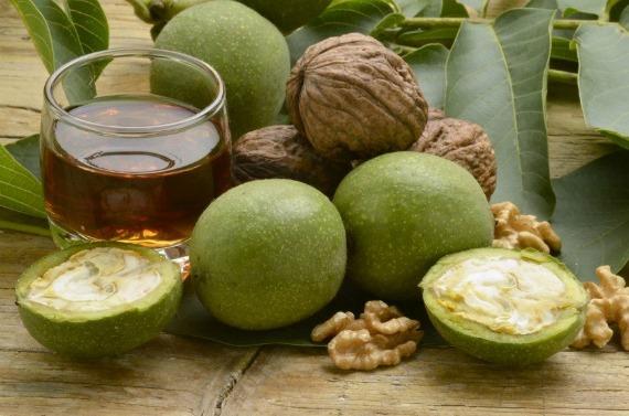 Зеленые (молодые) грецкие орехи – польза и вред