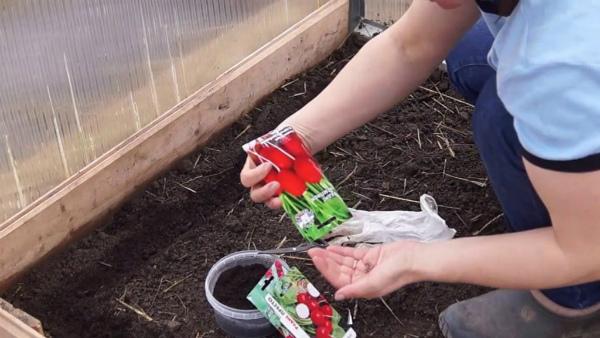 Работы огородников в апреле
