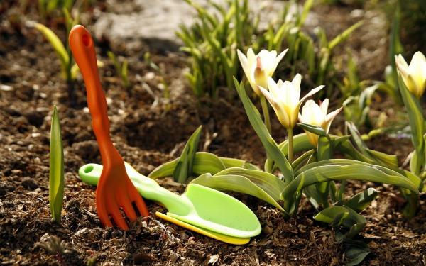 Уход за цветником в апреле