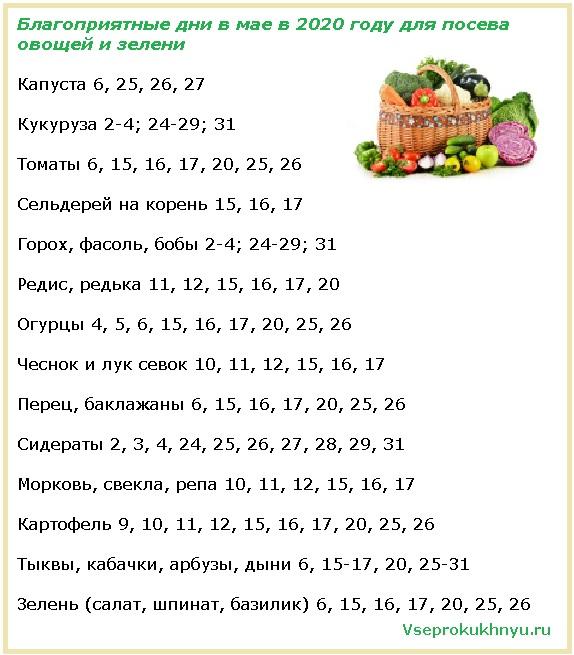 Благоприятные даты для посадки овощей в мае 2020