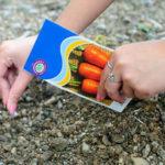 Благоприятные дни для посева моркови в 2020 году
