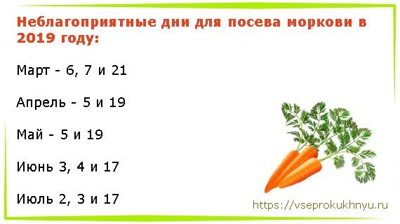 Неблагоприятные дни для посева моркови в 2019 году