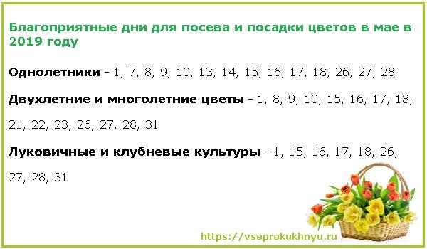 Благоприятные даты для посева и посадки цветочных культур