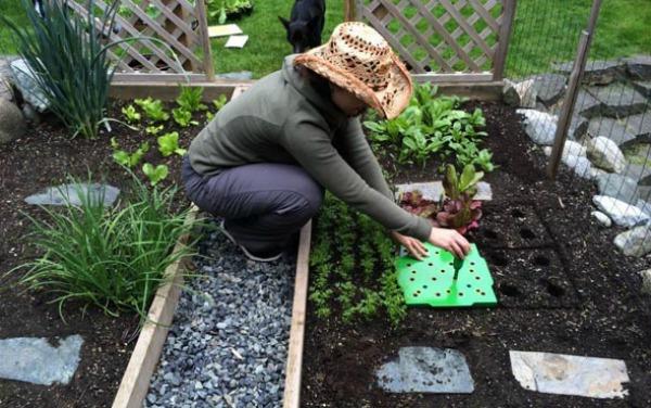 Работы огородников в мае
