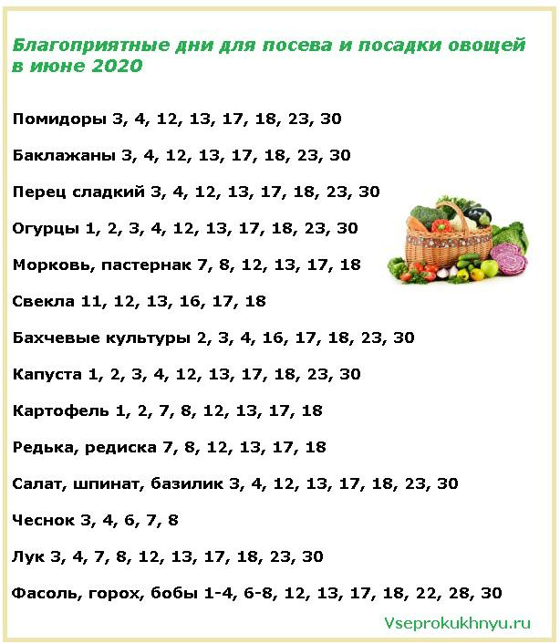 Благоприятные дни для посева овощей в июне 2020