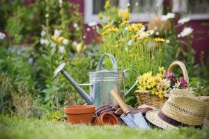 Лунный посевной календарь на июнь 2020 года садовода и огородника Таблица Благоприятные дни для посадки