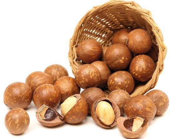 Как правильно выбрать и хранить орехи макадамия