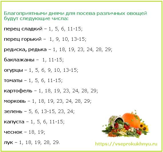 Посадка овощных культур