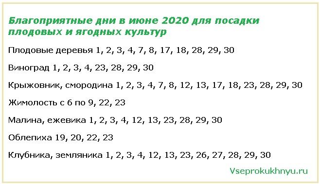 Посадочные дни для плодовых деревьев в июне 2020