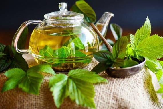 Смородиновый чай - применение