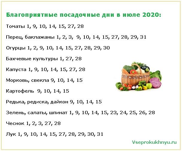 Благоприятные дни для посадки растений в июле 2020 года