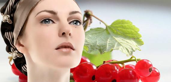 Листья смородины: польза и вред для женщин