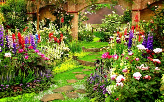 Уход за цветником в июле