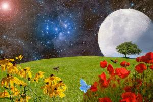 Лунный посевной календарь на июль 2019 года садовода и огородника таблица Благоприятные дни