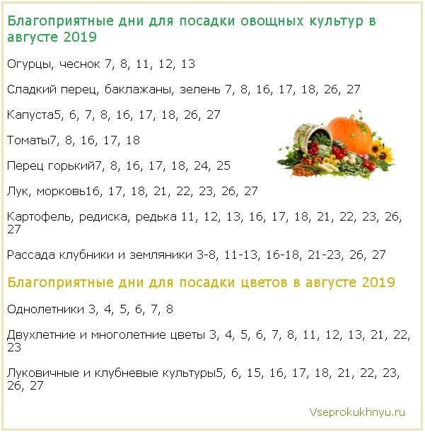 Благоприятные дни для посадки растений в августе 2019