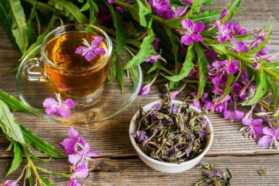 Как заваривать ферментированный иван-чай правильно