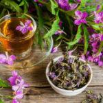 Ферментация иван — чая в домашних условиях