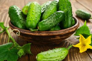 Огурцы польза и вред для здоровья организма