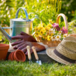 Лунный посевной календарь на август 2019 года садовода и огородника