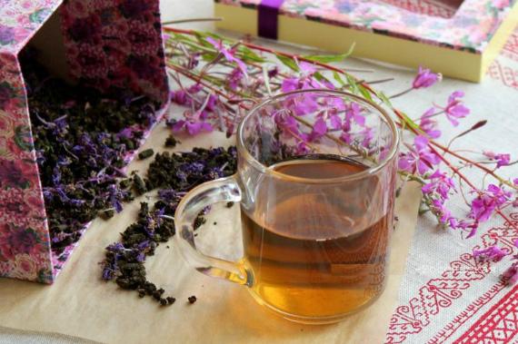 Какой иван-чай лучше: ферментированный или не ферментированный