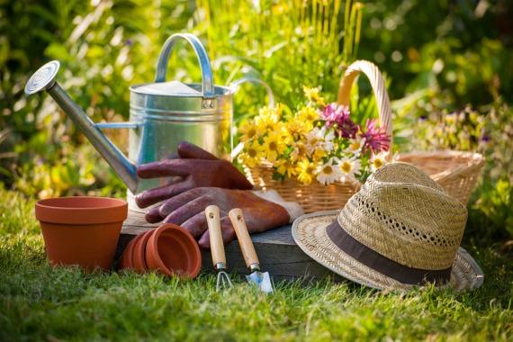 Работы огородников в августе