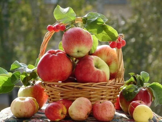 Подготовка яблок и советы по приготовлению