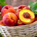 Нектарин: польза и вред для здоровья