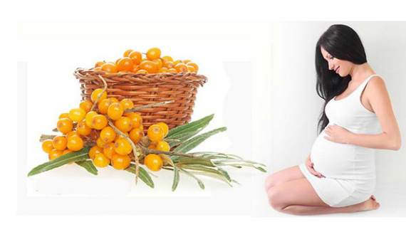 Польза облепихи при беременности и грудном вскармливании
