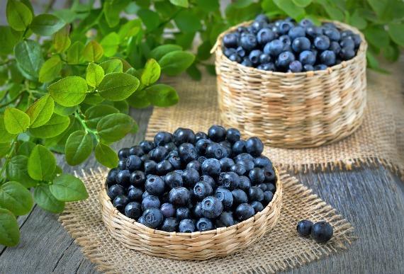 Химический состав калорийность ягод черники