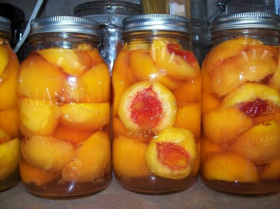 Как заготовить абрикосы в сиропе на зиму без воды