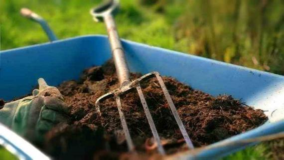 Органические удобрения для подкормки малины осенью