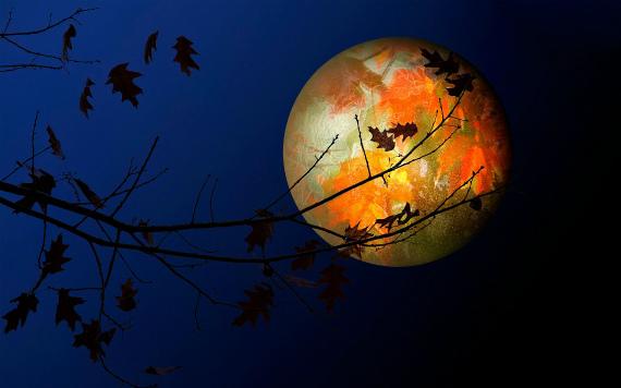 Фазы Луны в октябре в 2019