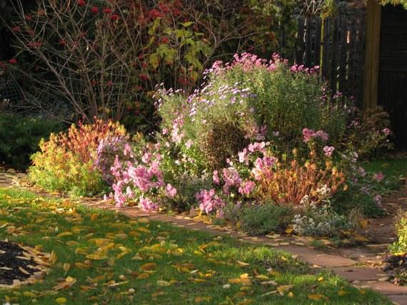 Уход за цветником в октябре
