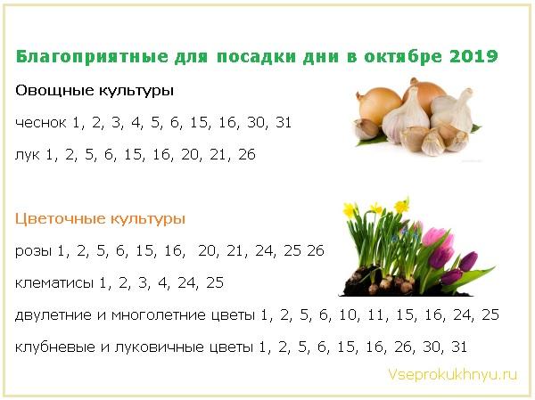 Благоприятные дни для посадки овощей и цветов в октябре 2019