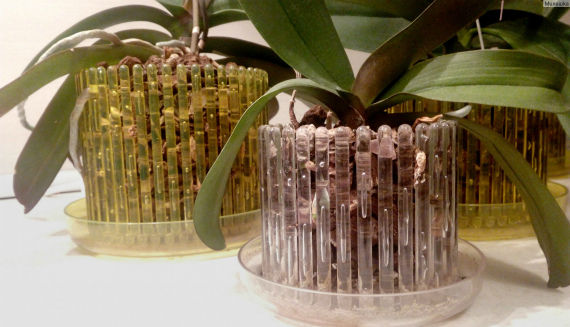 Кашпо для орхидеи