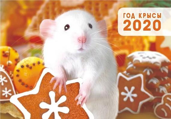 Как встречать новый 2020 год Крысы по знакам зодиака