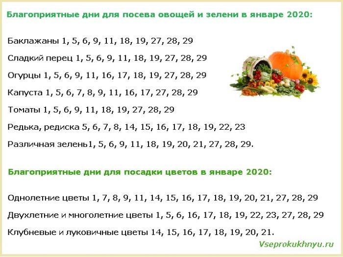 Благоприятные дни для посева растений в январе 2020