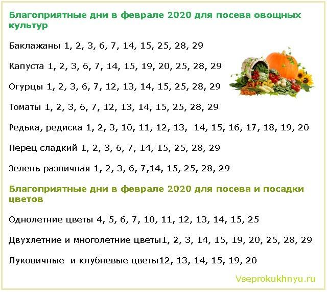 Благоприятные и неблагоприятные дни для посева растений в феврале