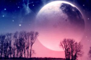 Лунный посевной календарь на февраль 2020 года огородника и садовода Таблица Фазы Луны
