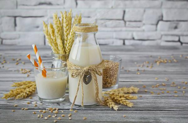«Молоко» из проростков пшеницы