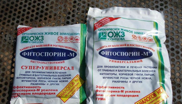 Фитоспорин – описание препарата