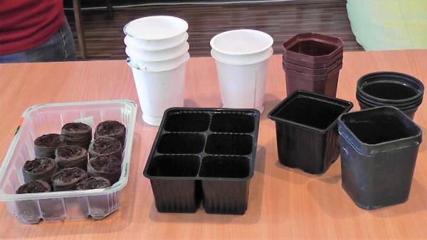 Подготовка емкости и грунта